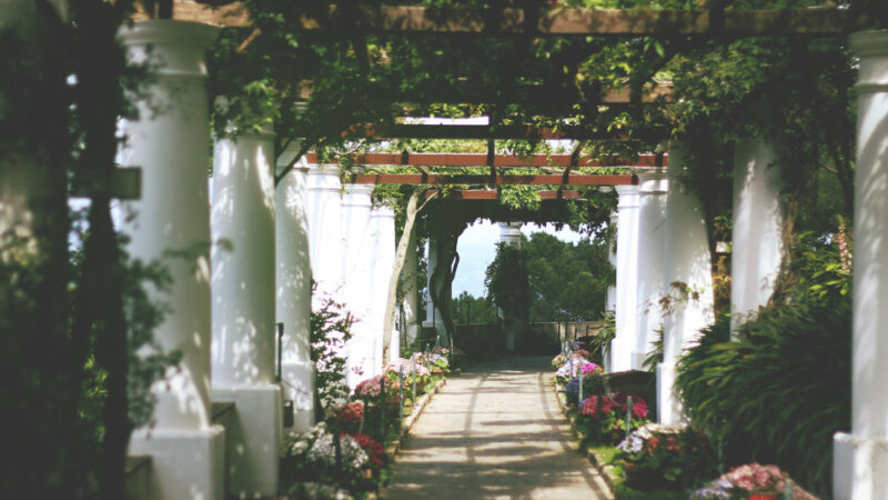 Things to do on the Island of Capri
