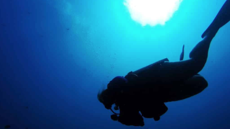 Fat Girls Diving: Changing the Narrative in the Scuba Industry